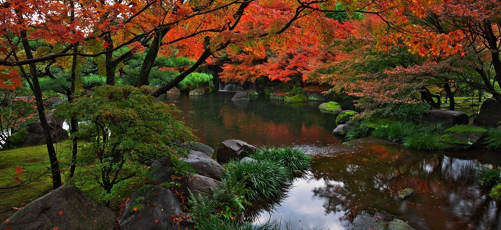 <font color=red>秋の王候貴族のバラ園ともみじトンネル</font>「神戸市立須磨離宮公園」と世界遺産「姫路城」・日本庭園の紅葉の美「好古園」魚の棚でお買いもの