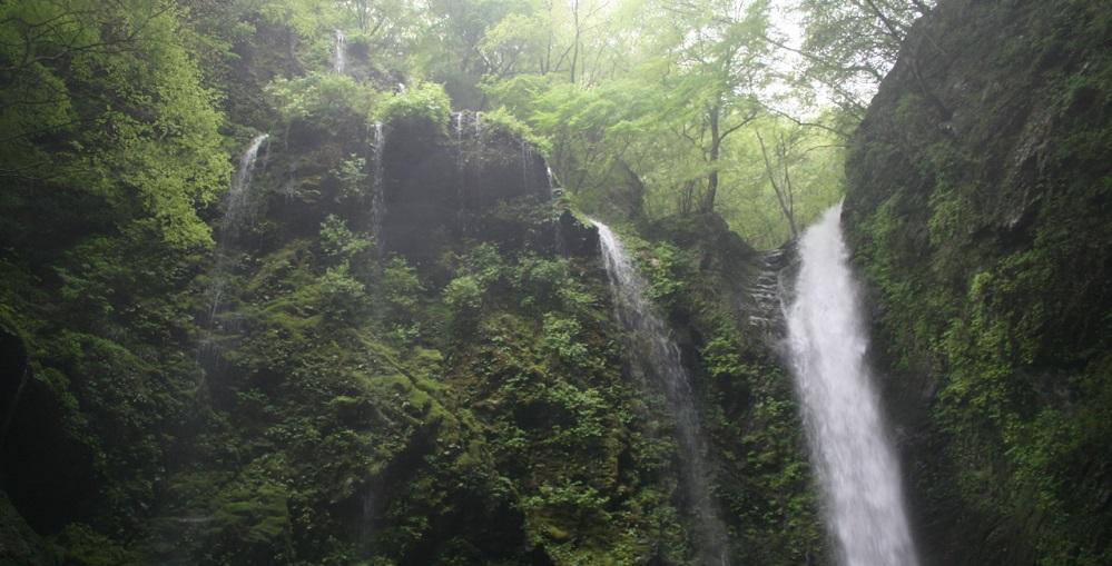 ええとこあるでよ!「岳人の森」と神通の滝