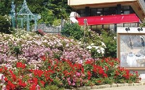 【徳島発】天空の花園 ガーデンミュージアム比叡と琵琶湖大津館のランチ(滋賀)