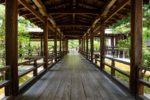 新緑の京都 完全非公開大覚寺「庭湖館」でいただくお抹茶と京都御所自由散策