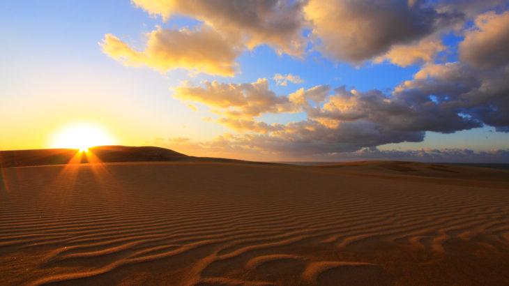 【徳島発】鳥取砂丘と砂の美術館とガイドの案内で大山ブナの森ウォーク