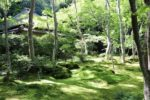 【徳島発】ガイドが案内する 京都歴史歩きたび 悲恋物語・文化物語