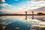 【徳島発】瀬戸内海 天空の鏡 父母ヶ浜と四季折々の美しさ雲辺寺の秋色景色(香川・日帰り)