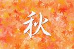 【徳島発】「秋の絶景 紅葉めぐり」奥大山ブナのトンネルとガイドと歩く黄金色の原生林