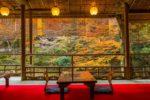 【徳島発】みやびな京都 京の食と文化を楽しむ旬な旅11月(京都 日帰り)