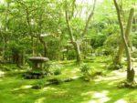 京都花めぐりの旅【5月】~心身をほぐす緑の時間~