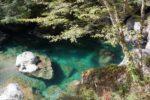 おもてなし案内人と初級登山!アケボノツツジの稲叢山&エメラルドグリーンの瀬戸川渓谷
