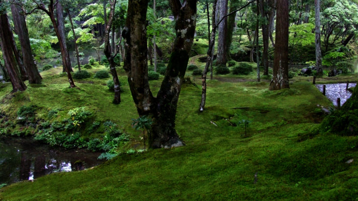 世界文化遺産「苔寺」の庭園と『鈴虫寺』
