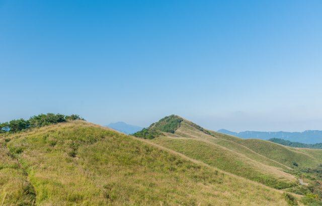 ~徳島と愛媛の県境に位置する~霧の森・塩塚高原を歩く