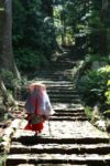 GOTOトラベル事業支援~神々が御座す聖域~ 語り部とともに歩く「世界遺産・熊野古道」と「熊野三山詣」