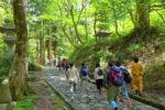 大山ブナの森 と三つの日本一をもつ 大神山神社奥宮 ガイドとともに心を洗う旅