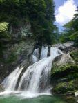 現地ガイドとともに 新緑の瀬戸川渓谷散策