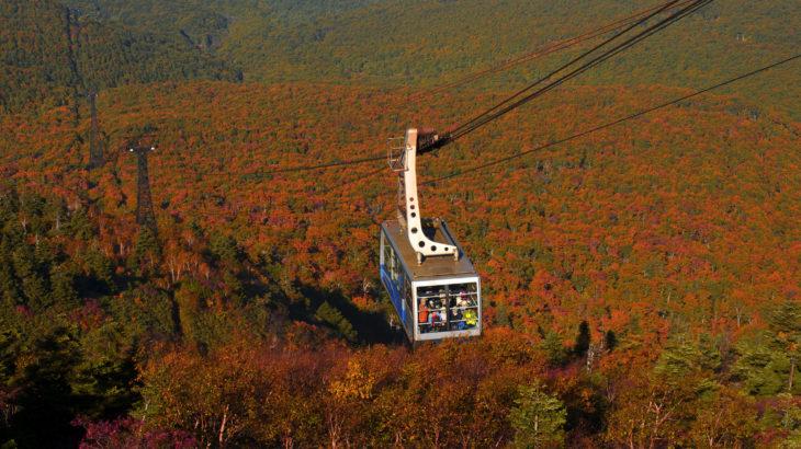 秋真っ盛りのみちのくへ! 八甲田山空中散歩と十和田湖から奥入瀬渓流へ3日間(青森・秋田)