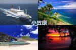 世界自然遺産 太平洋に浮かぶ神秘と奇跡の島 心・動く!小笠原 6日間(東京)